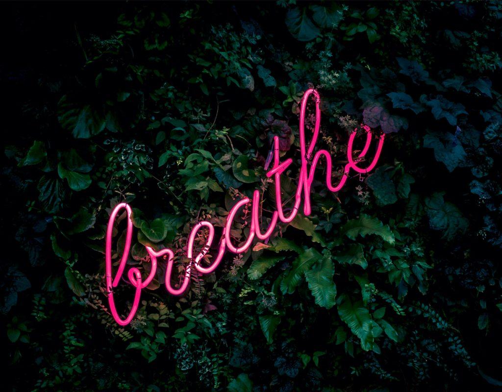 """scritta luminosa """"breathe"""" su sfondo di foglie"""